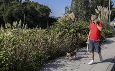 Maoño albergará un taller para aprender a crear jardines autóctonos y ecológicos