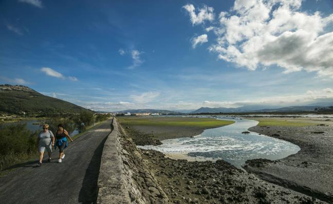 Medio Rural repoblará las Marismas de Santoña con almeja fina