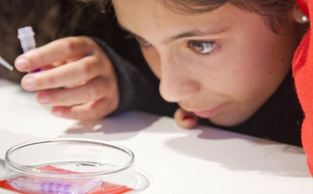 Cantabria busca científicas