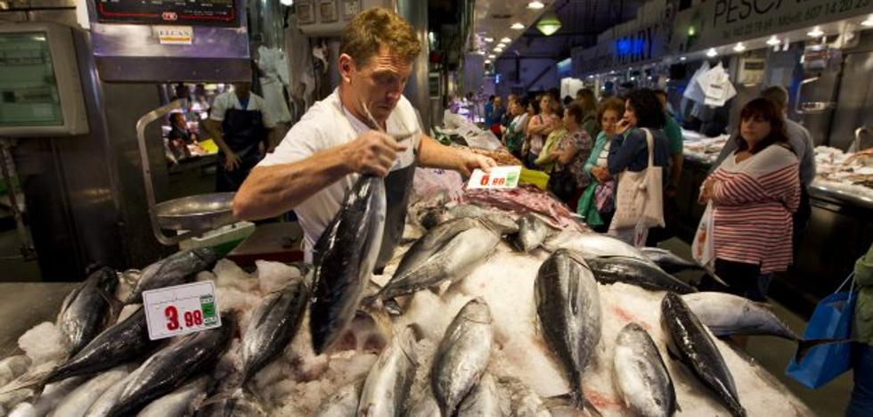 La flota ha puesto en el mercado cerca de un millón de kilos de bonito