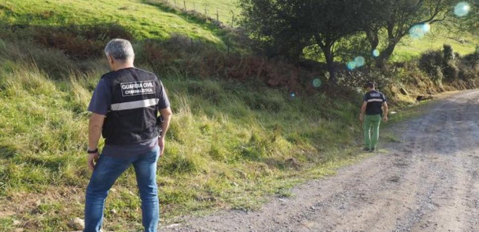 Hallan muerta en un camino de Guriezo a una mujer presuntamente asesinada