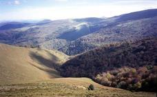 La lluvia y la niebla frenan la progresión de la Reserva del Saja