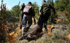 Los cazadores denuncian el «colapso» en Montes por falta de personal administrativo