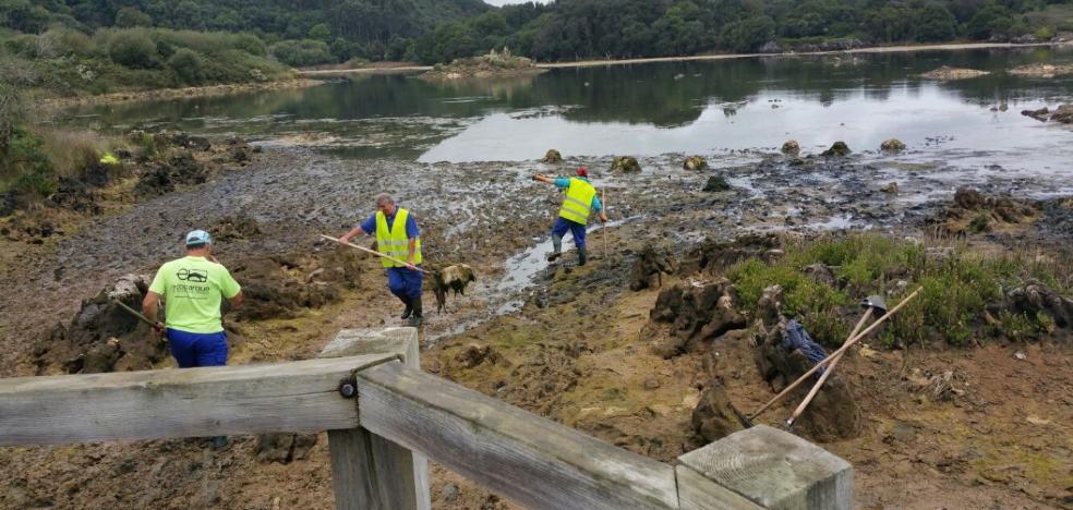 Arnuero pone en marcha la mejora ambiental de la marisma Joyel