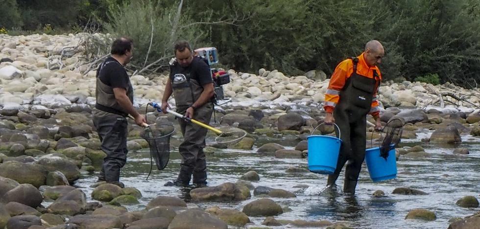 Hazas de Cesto recomienda no usar el agua del grifo, que sale turbia «por la sequía»