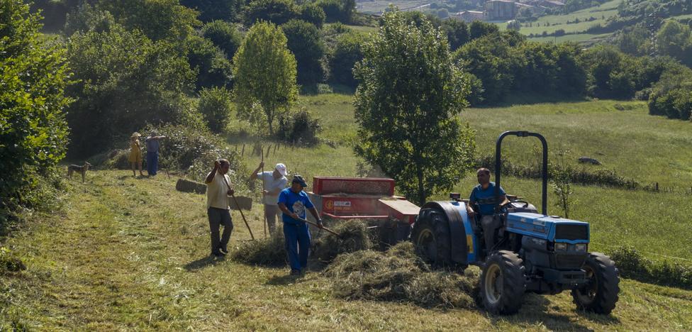 Inquietud en el campo ante las multas a vecinos por ayudar en tareas agrícolas