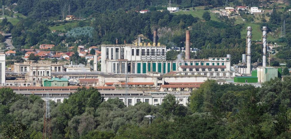 Viscocel amplía su producción al ámbito sanitario y a las toallitas biodegradables