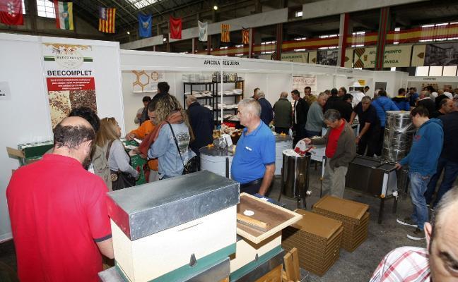 La Feria Apícola abre sus puertas con 50 expositores