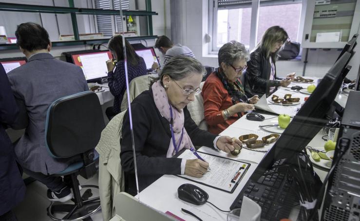 Cata para elegir los mejores quesos de España, en el Laboratorio Agroalimentario de Santander