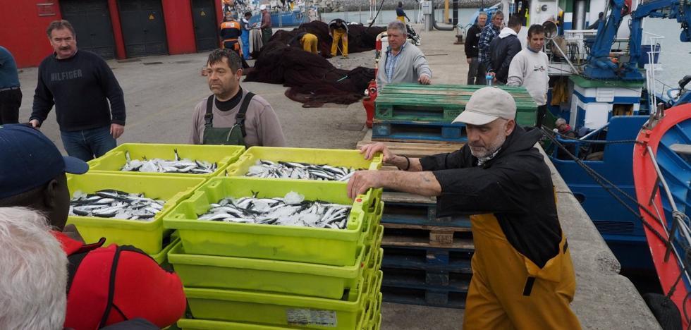 Récord de facturación en el puerto pejino