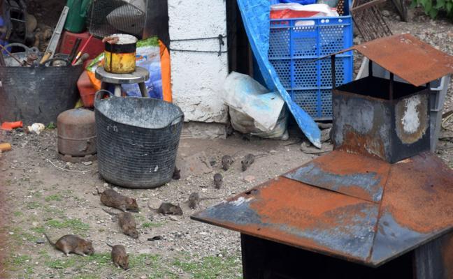 Santander desaloja a los ocupantes de la vivienda social que tiene en Rinconeda