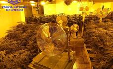 La Policía descubre un chalé en Boo dedicado a producir marihuana