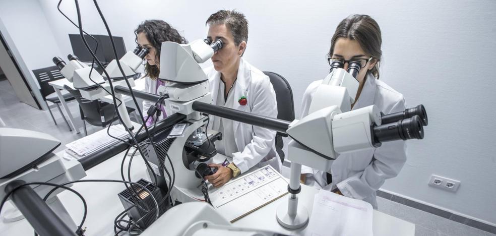 Cantabria ha perdido el 15% de sus investigadores desde 2010