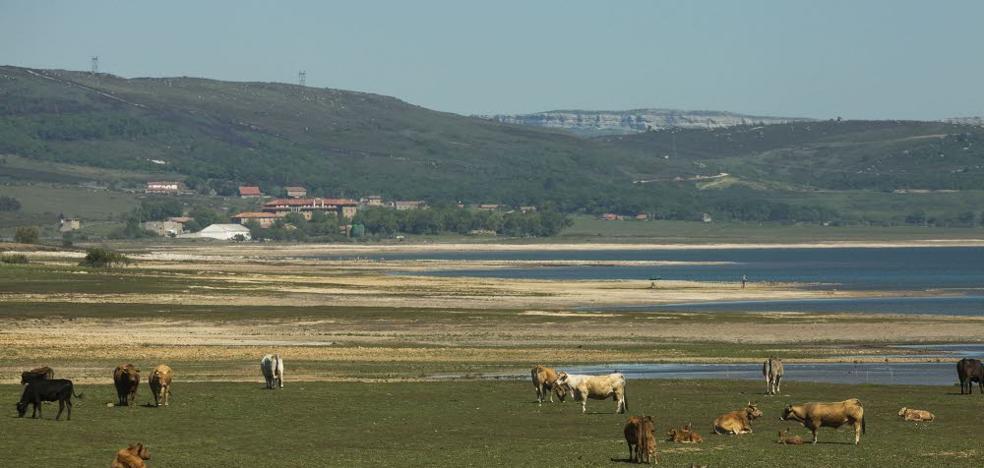 La sequía costará más de 5 millones de euros a los ganaderos del sur de Cantabria