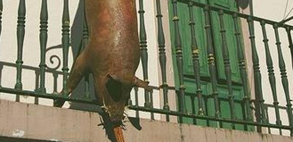 El cerdo muerto colgado en la fachada de la Junta Vecinal de Otañes desata las críticas de Equo
