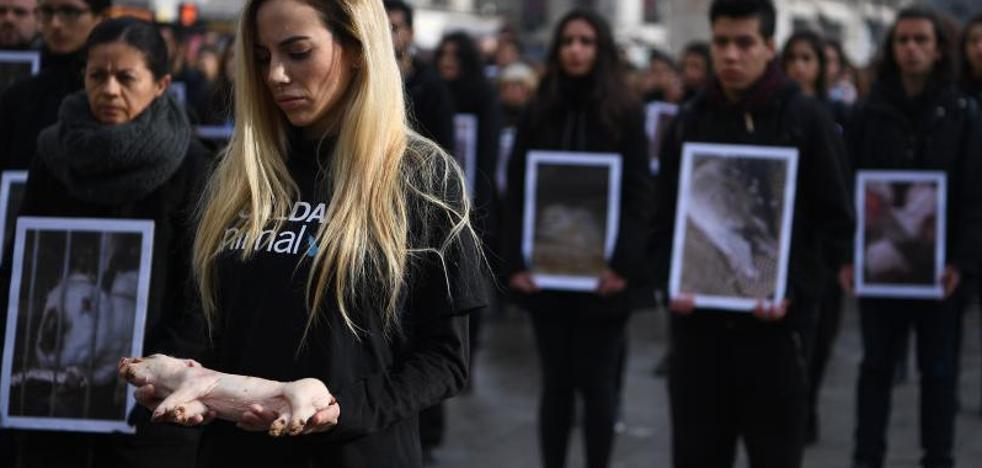 Protestan en Madrid con cadáveres de animales para pedir que se respeten sus derechos
