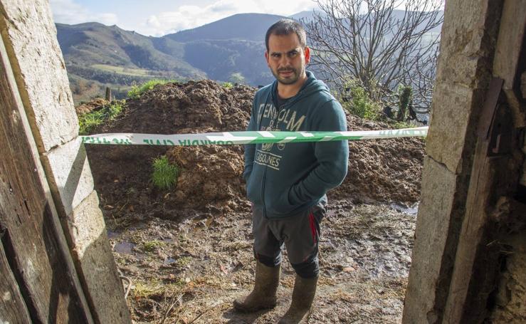 Las incógnitas de las reses asesinadas en Bielva