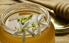Cuatro tipos de miel de Cantabria