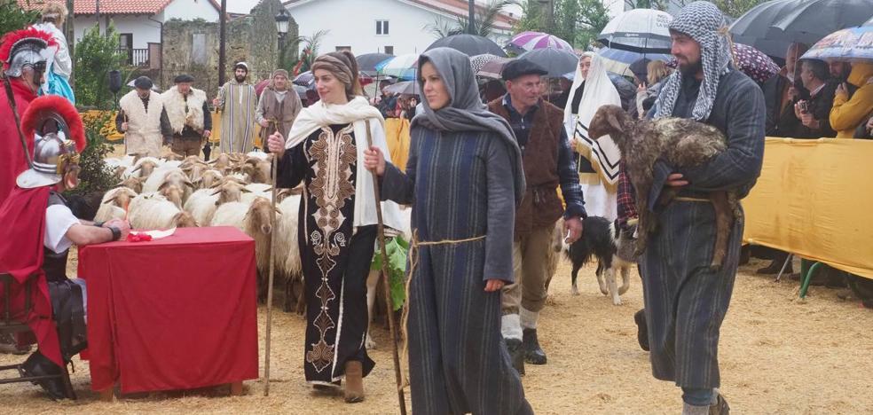 Los Reyes Magos, Herodes y la Sagrada Familia se citan en Seña