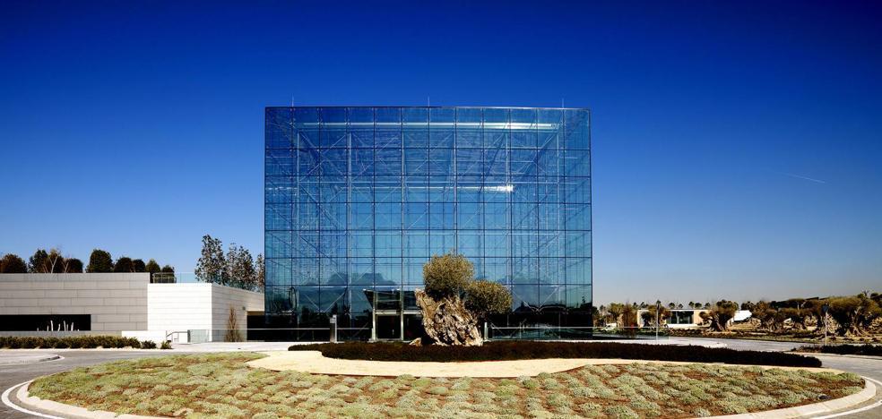 El exclusivo aceite 'milenario' del Santander