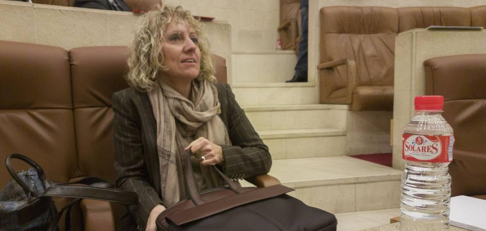 Díaz Tezanos no descarta presentarse como candidata socialista en las autonómicas