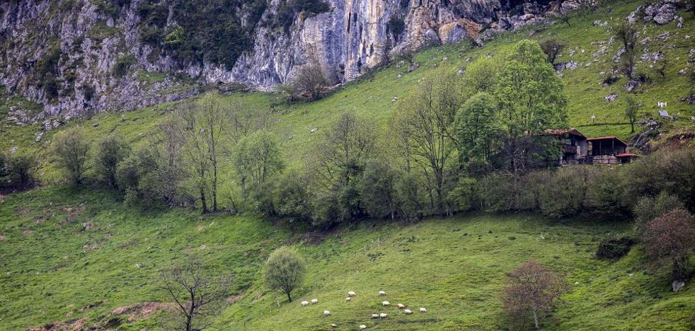 Los Valles Pasiegos, del paisaje a la mesa