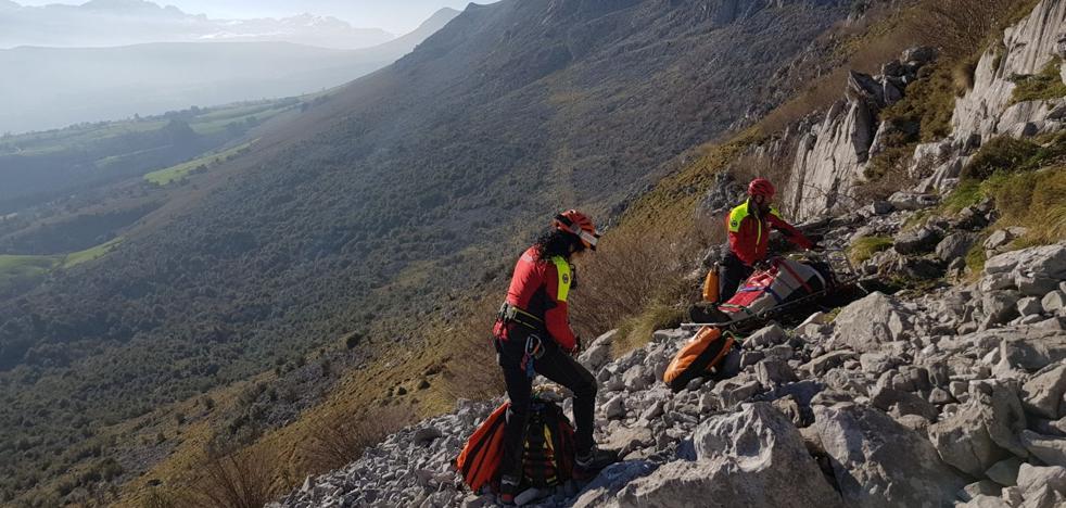 Los bomberos de Laredo socorren a un trabajador al que le cayó un árbol encima en Escalante