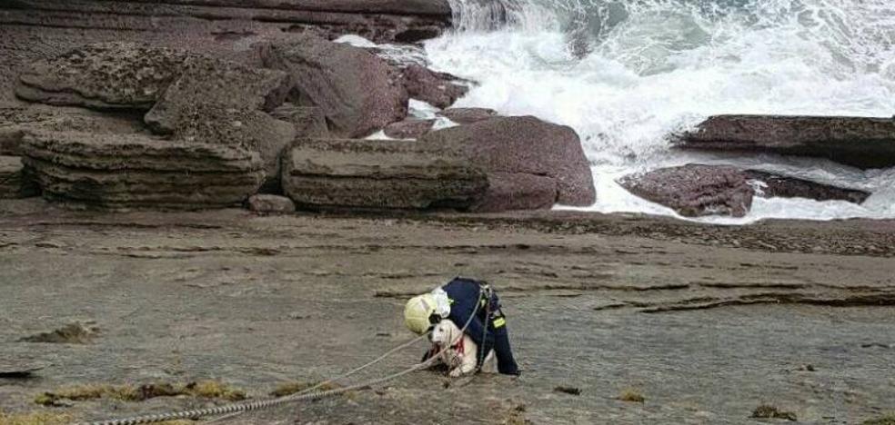 El rescate de Nala en el acantilado de Mataleñas