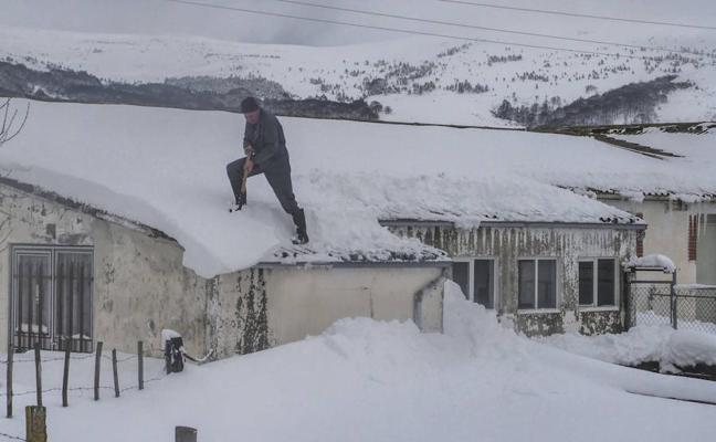 Nieve a paladas