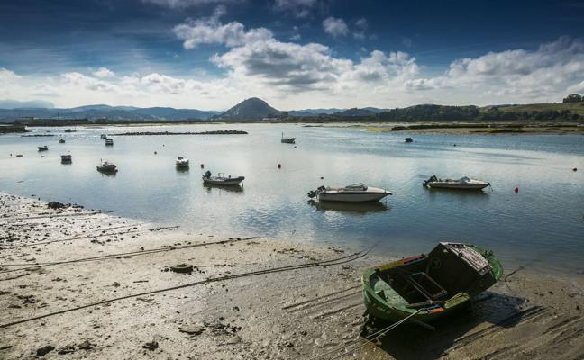 El patronato respalda el Plan de Ordenación del Parque Natural de las Marismas de Santoña