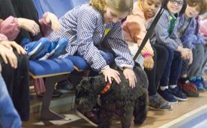 'Koko' se va de gira por los colegios