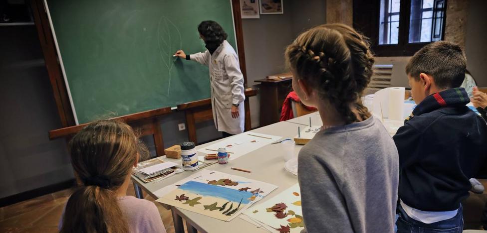 Educación ofrece medio millar de plazas para actividades en el periodo no lectivo que empieza este jueves