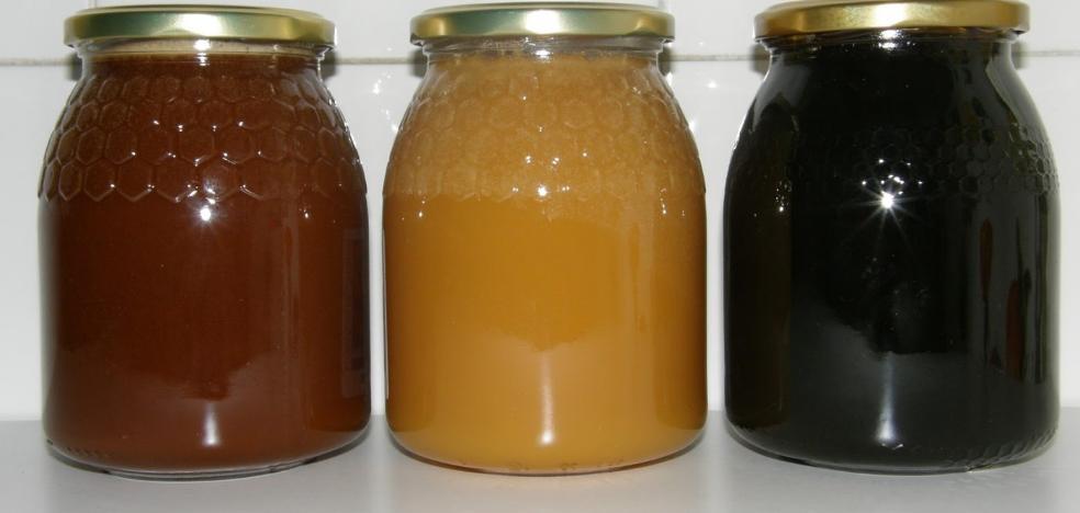 El engañoso etiquetado de miel llega al Parlamento de Cantabria
