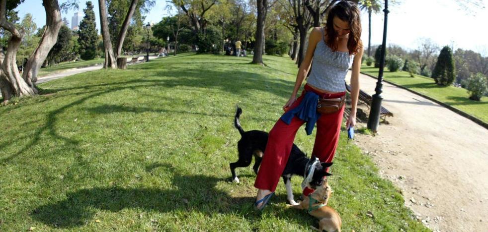 Reocín abrirá este año el primer parque para perros del municipio