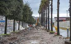 Avanza la obra del nuevo paseo peatonal entre árboles junto a la Estación Marítima
