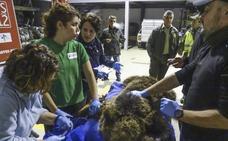 Cabárceno podrá tratar a sus animales en el centro de recuperación de Obregón