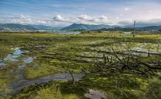 El Ministerio inicia los trámites para licitar el colector general de la ría de Rada en las Marismas de Santoña