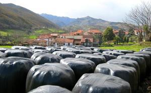 El Gobierno extenderá el proyecto para reciclar plásticos ganaderos a 36 municipios