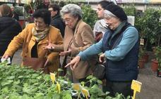 Feria de plantas en Torrelavega y Biocantabria en Santander: buenos planes ecológicos este fin de semana