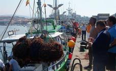 El puerto de San Vicente cuenta con nuevos recursos marinos