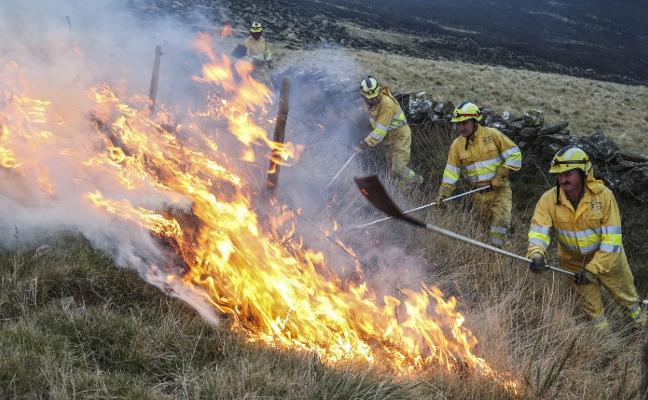 El periodo de alerta por incendios forestales termina con 360 menos que el año pasado