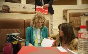 Cantabria recupera el Consejo de la Mujer con el visto bueno de todo el Parlamento