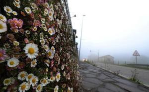 La movida primavera cántabra: de un sol radiante a un cielo muy nuboso