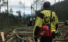Fallece un trabajador forestal aplastado por un árbol en Guriezo