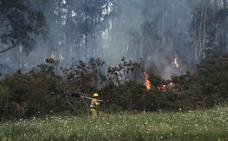 El primer incendio del verano afecta a un monte entre Novales y Golbardo