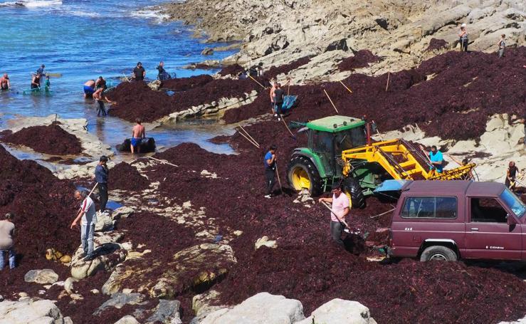 La caloca desembarca en La Maruca