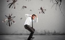 Si te huelen los pies, cuidado con los mosquitos