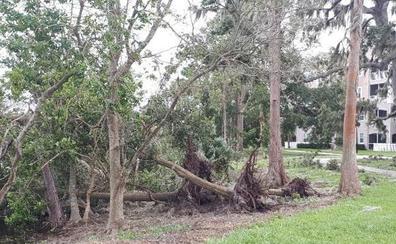 «Irma no llegó con fuerza a Orlando»