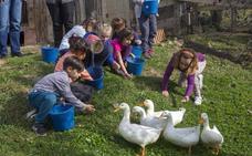 La granja, una escuela diferente