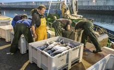 Pesca enviará pruebas gráficas al Ministerio para luchar contra los descartes